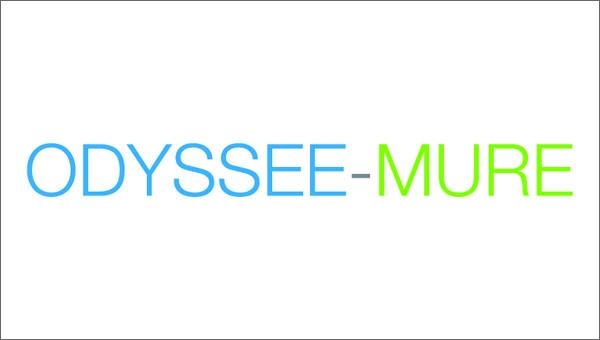 "Progetto ODYSSEE-MURE ""A decision support tool for energy efficienty policy evaluation"""